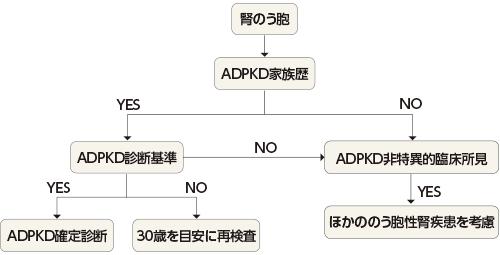 エビデンスに基づく多発性のう胞腎(PKD)診療ガイドライン